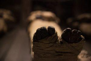 Museu Itinerante Antigo Egito à Pompeia